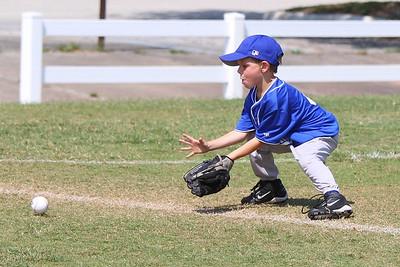 Sports_Teams